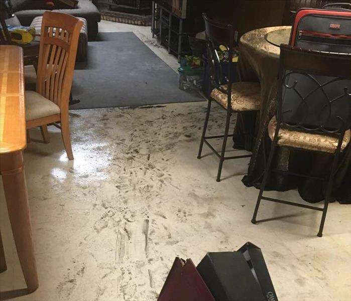 Water Damage Carleton/Maybee  Residents: We Specialize in Flooded Basement Cleanup and Restoration!