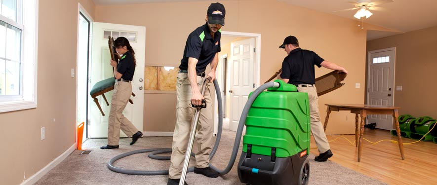 Carleton, MI cleaning services