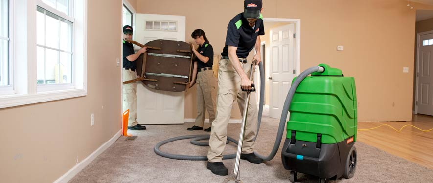 Carleton, MI residential restoration cleaning